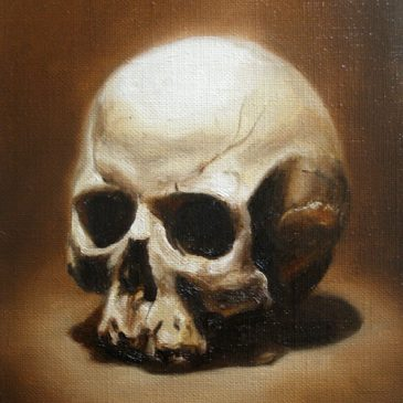 Small skull studies