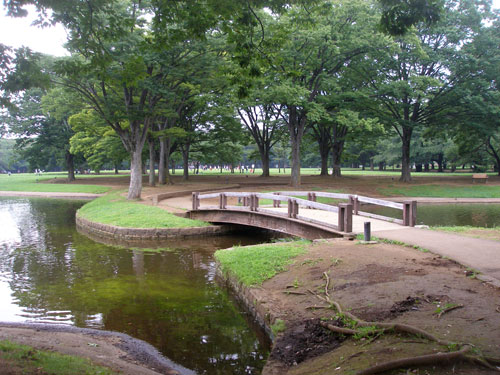 A photo of a bridge over some water in Yoyogi park